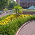 office park exterior landscaping